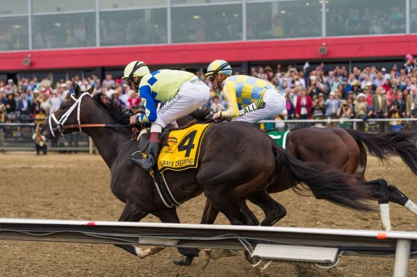 Always Dreaming and Classic Empire battle for the lead at the 2017 Preakness (Michael Jordan)