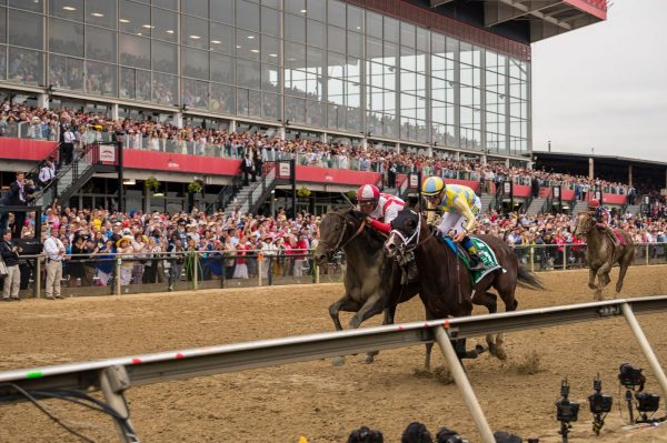 Coming down to the finish, Cloud Computing and Classic Empire battle for the lead at the 2017 Preakness. (Michael Jordan)