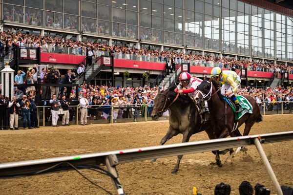 Coming across the finish, Cloud Computing beats Classic Empire by a head at the 2017 Preakness. (Michael Jordan)