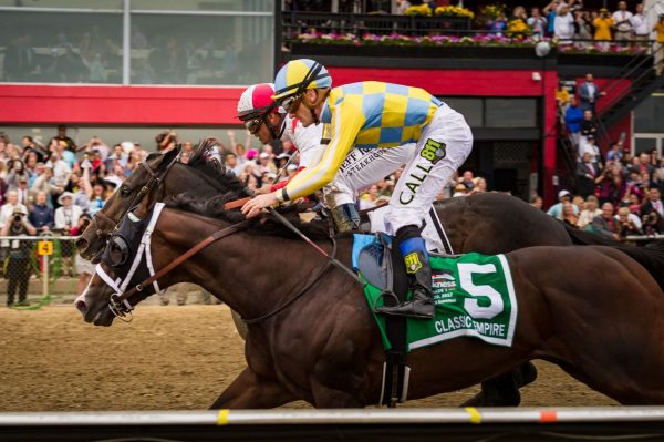 Cloud Computing (red and white silk) and Classic Empire (yellow and blue silk) ease up after the finish of the 2017 Preakness Stakes. (Michael Jordan)