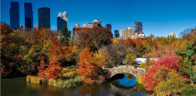 Central Park, New York City (Pixabay)