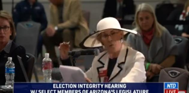 Linda Brickman speaking before a select committee of the Arizona Legislature (YouTube screenshot)