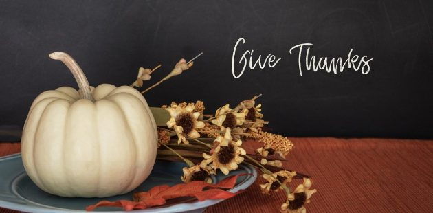 holiday thanksgiving Image by hudsoncrafted from Pixabay
