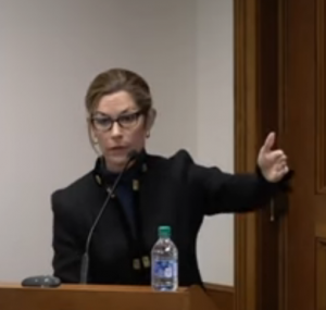 Georgia election fraud: attorney Jackie Pick at the Dec. 2 hearing before members of the Georgia State Judiciary Subcommittee (YouTube screenshot)