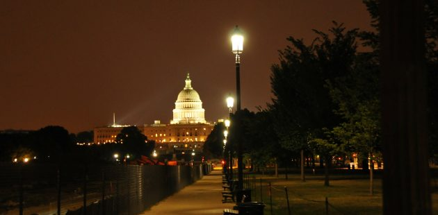 US Capitol in Washington,D.C. Image by Rich Syndram from Pixabay
