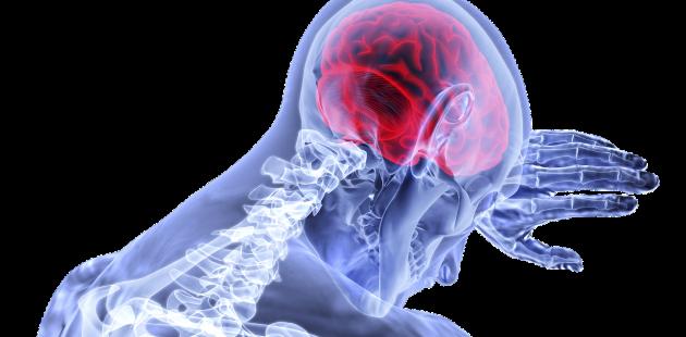 Alzheimer's brain: Image by VSRao from Pixabay