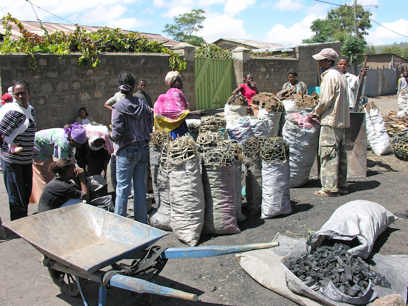 Charcoal sale in Ethiopia. A standard bag contains about 100 pound of charcoal and is sold for US $ 10-15, depending on quality. Photo: L. Andreoli (Netherlands)