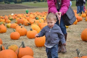 Ethan picks out a pumpkin. He lost his brother , Bryan- a soulmate.