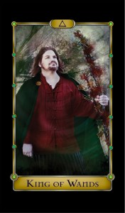 Actor Gavin Heck appears as the King of Wands.