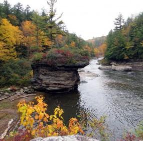 Stream-in-fall-1