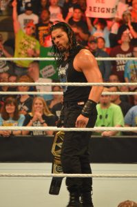 WWE Champion Roman Reigns. (Anthony C. Hayes)