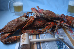 Steamed crabs at Papas. (Courtesy)
